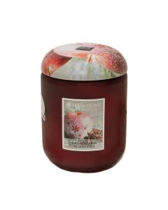 276400416 Frosted apple spice αρωματικό κερί σε βάζο 340 γρ. Heart and Home